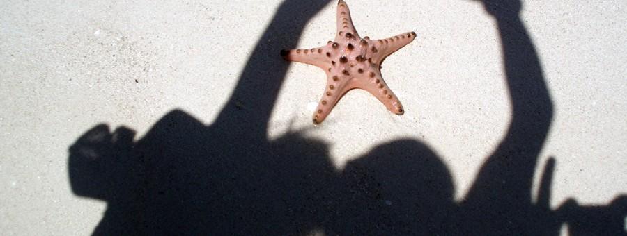 Pulau Pasir/Bintang Laut