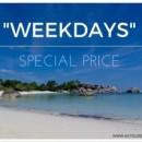 """""""Weekdays"""" With KK Tour"""